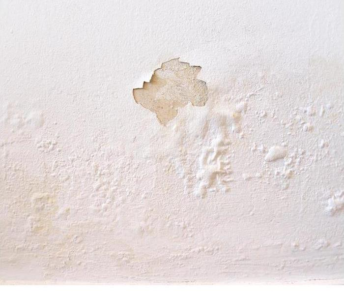 white wall with water damage spots and peeling paint
